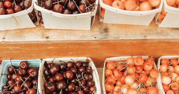 Grocery Guide and Tips to save while shopping